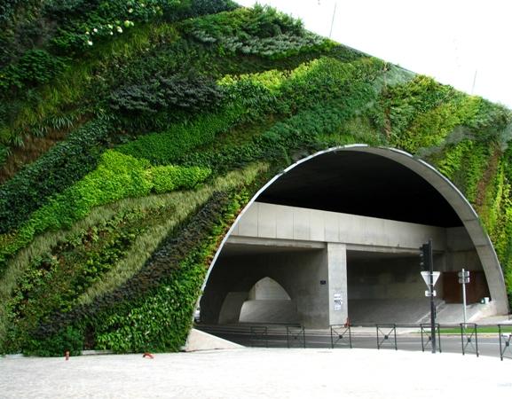 Mur végétal Aix-en-Provence