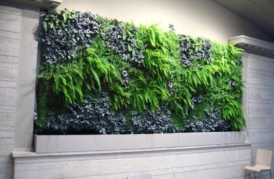 Mur végétal Ixelles